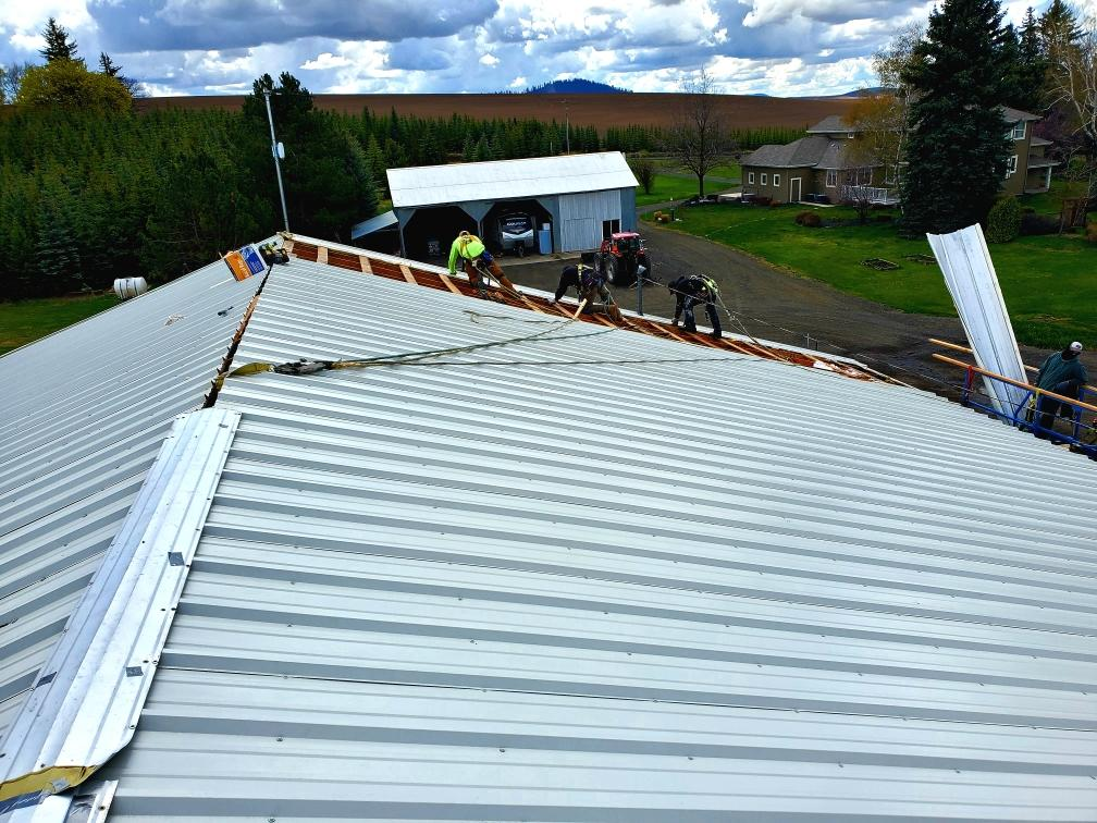 Fluid Roofing team installing a roof